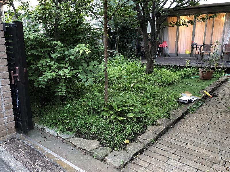 雑草であらた目黒区のお庭