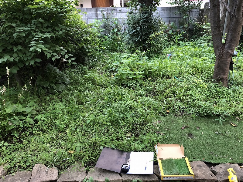雑草と畑の野菜の区切りがなくなった目黒のお庭