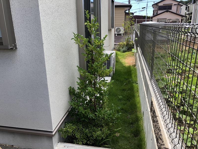 変更する前の建売り住宅の植栽とお庭