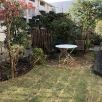 芝生を張り替えた武蔵野市のお庭