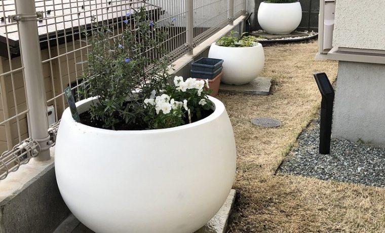 横浜市戸塚区で施工した白く丸いプランターが並ぶお庭