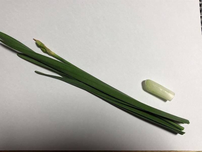 解体した水仙を自然の状態と同じように四枚の葉っぱを組み合わせた状態
