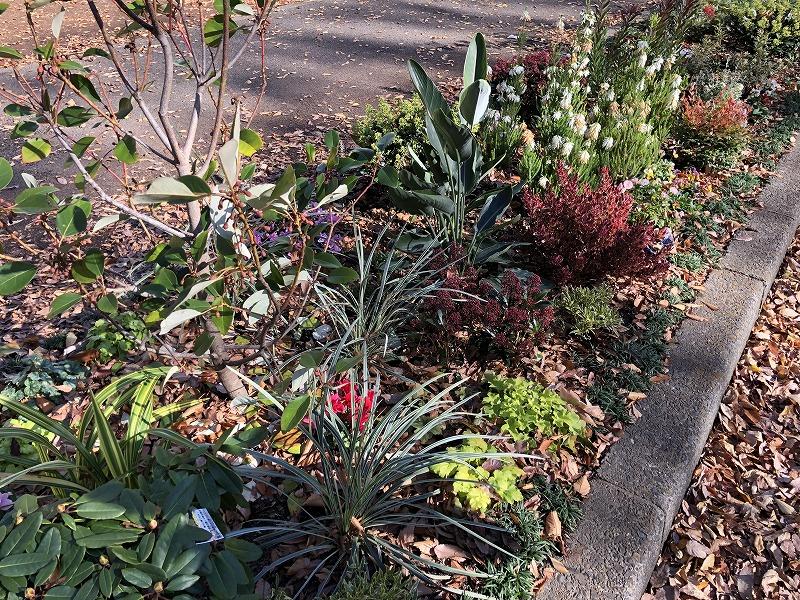 新しい植物と古来からの植物の植栽工事