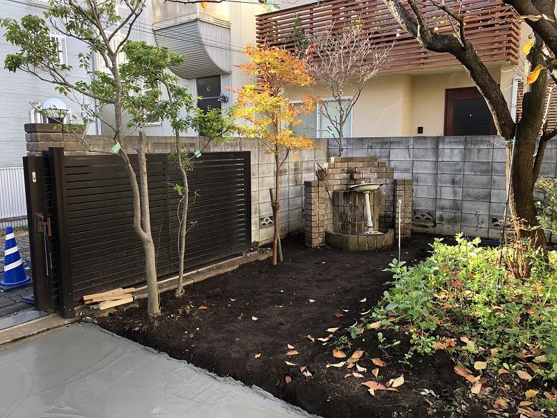 移植したヒメシャラに支柱をつけた目黒区の庭