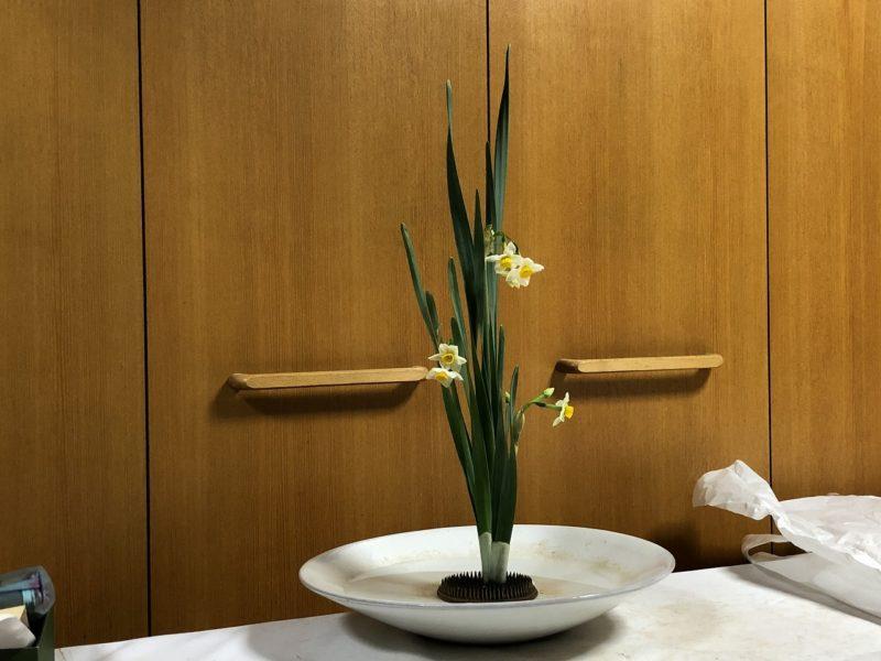 3株の水仙の生花