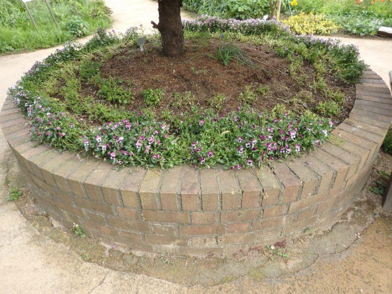 公園でよく見かける円形のレンガ花壇