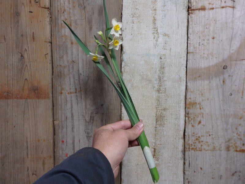 完成した生け花の水仙の組み立て