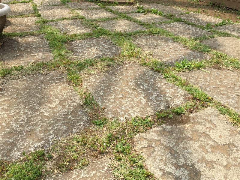 公園などで見かける石の道