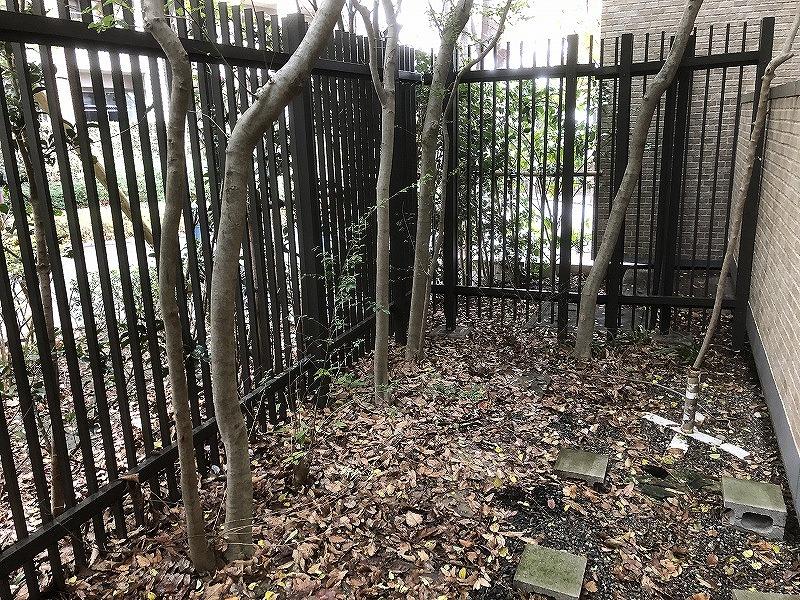 世田谷区の大きなマンションの地面の大量の落ち葉