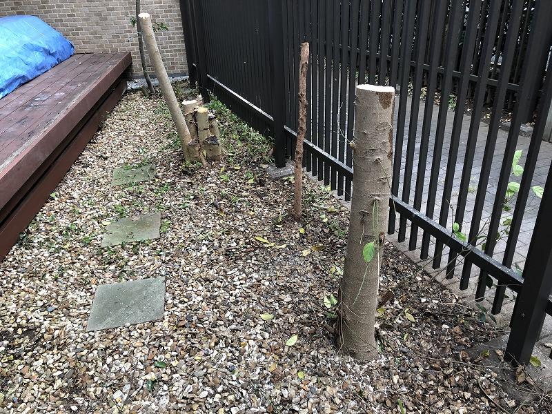 抜根するための伐採作業