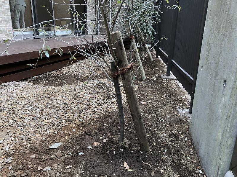 防腐処理した丸太支柱