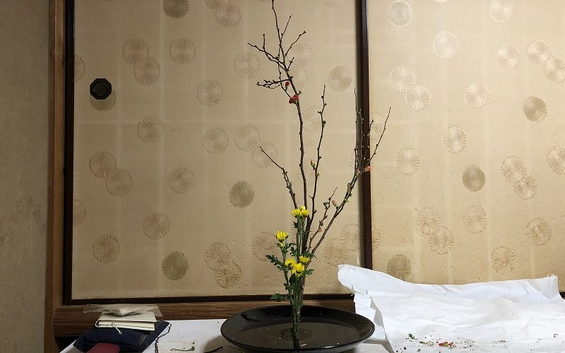 池坊目黒教室でいけたボケと小菊の生花