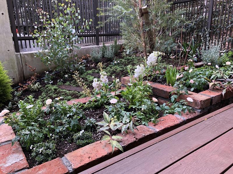 白い花を中心に植栽したレンガの花壇