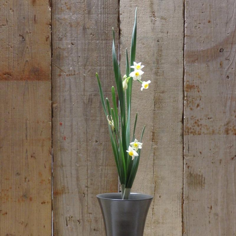 造園会社ぐりんぐりんが提案する5つの花がある暮らしをする方法