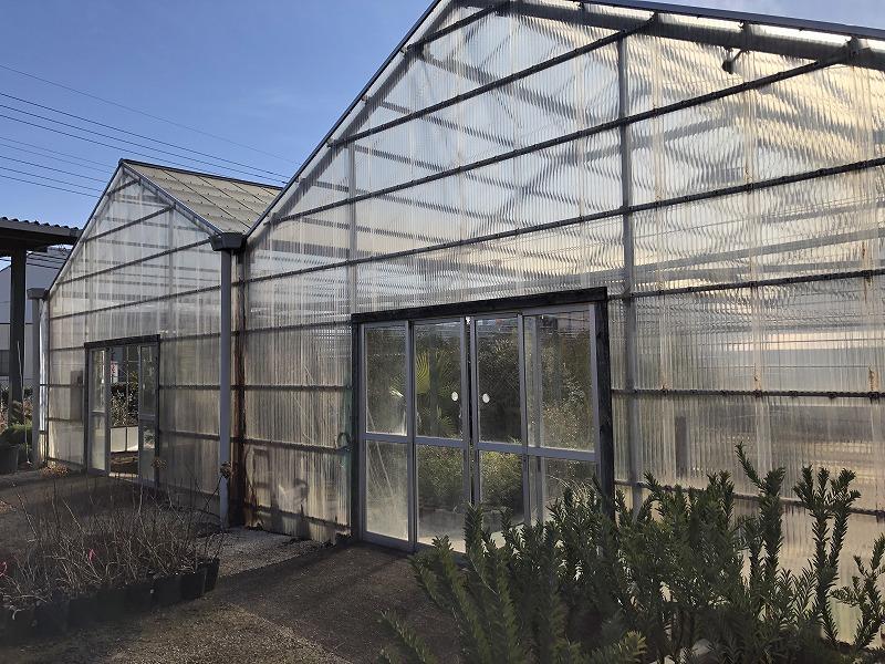埼玉で育たない樹木を管理する温室