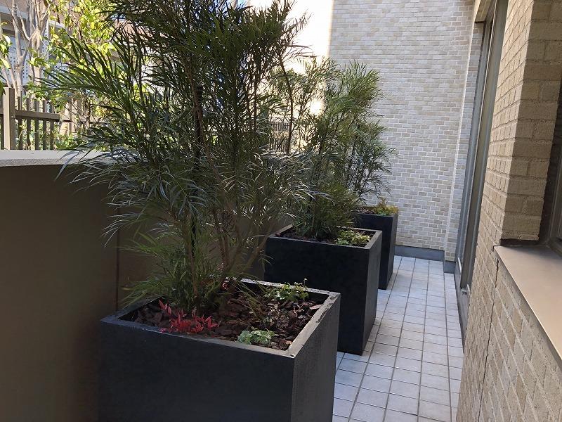 世田谷区の個人邸の庭づくりで設置した目隠しプランター