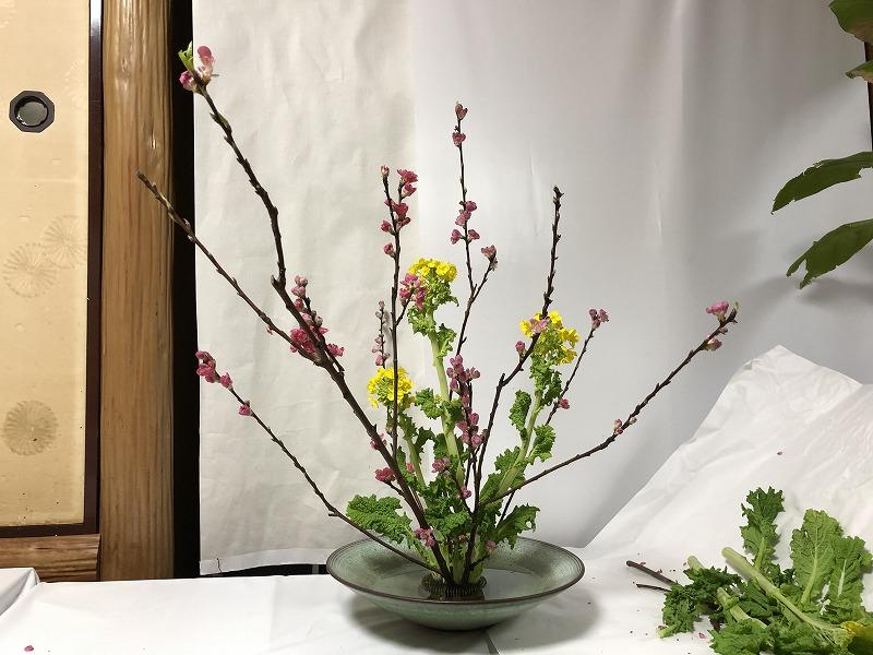 生徒である造園会社ぐりんぐりん横田がいけた桃と菜の花の自由花