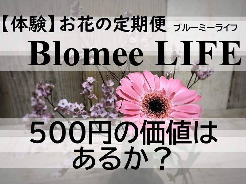 お花の定期便ブルーミーライフの花束体験画像
