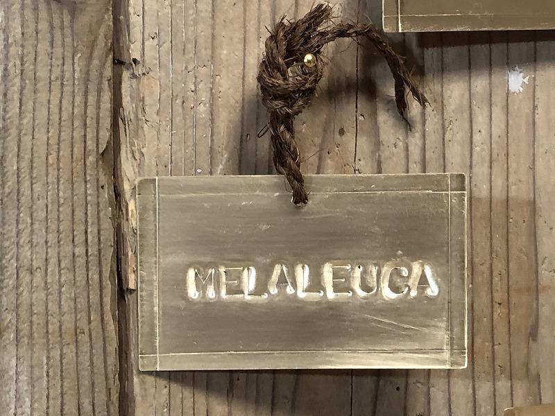 メラレウカの真鍮製の名札