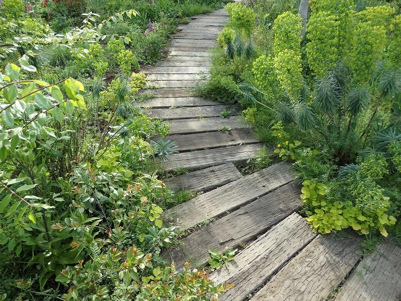 枕木の道がある植物がいっぱいな庭