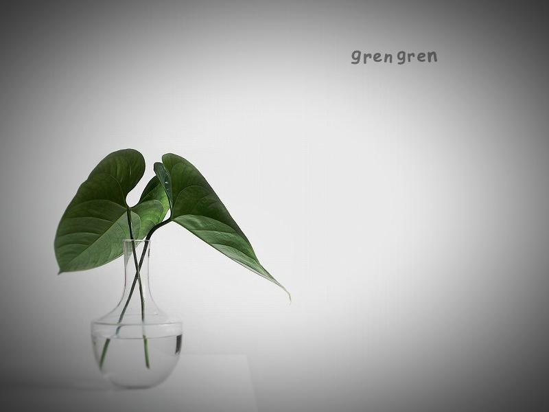 お庭に生えている植物をカットして花瓶に差す生活の潤い