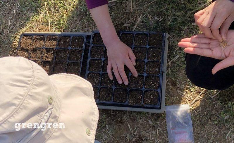 種を蒔いたら上に土をかける作業