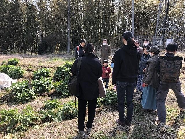 無肥料野菜栽培を学ぶ畑