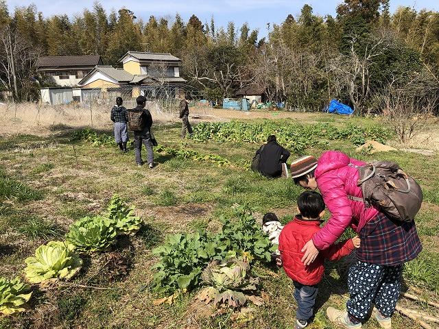 暑い3月上旬の畑の家族