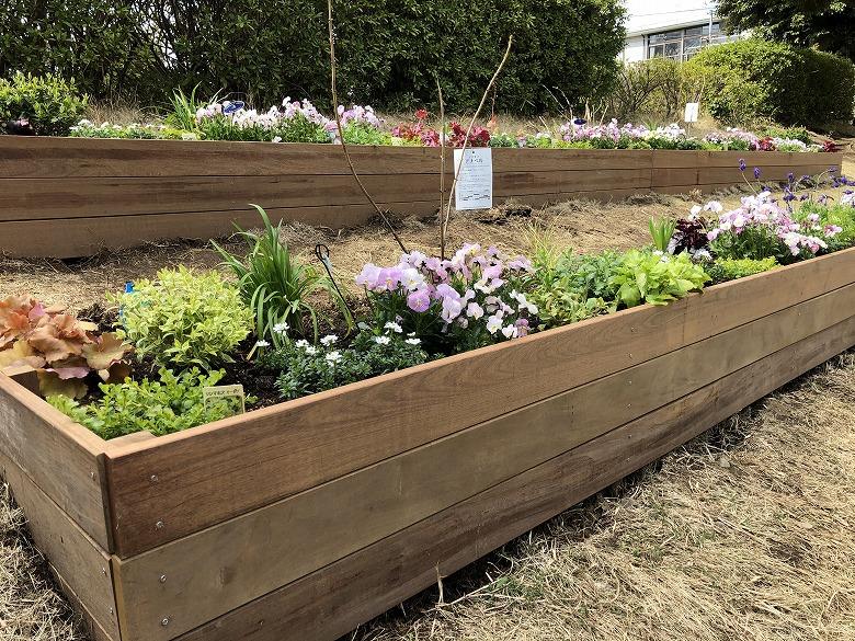 季節の植物を植栽したイペの花壇