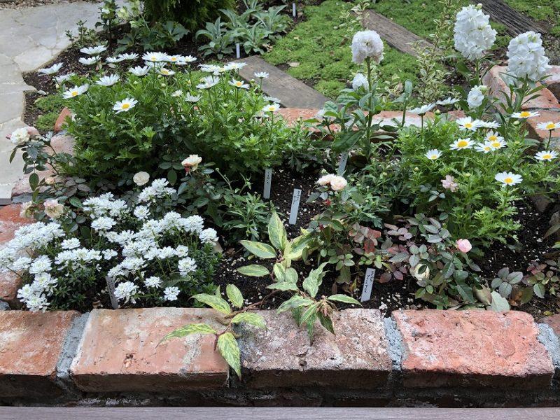 亜鉛製の植物ラベルを設置した世田谷区の個人邸花壇