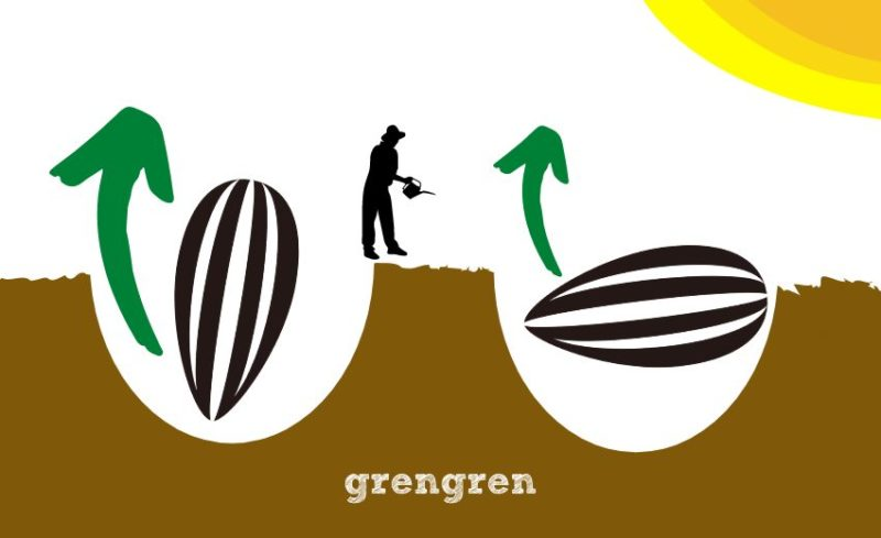 種の蒔き方の二つのパターン