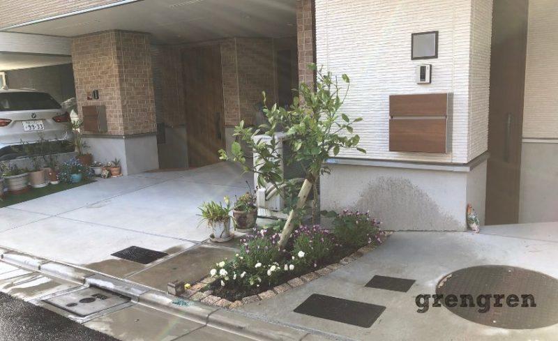 目黒区の新築住宅の春の植栽