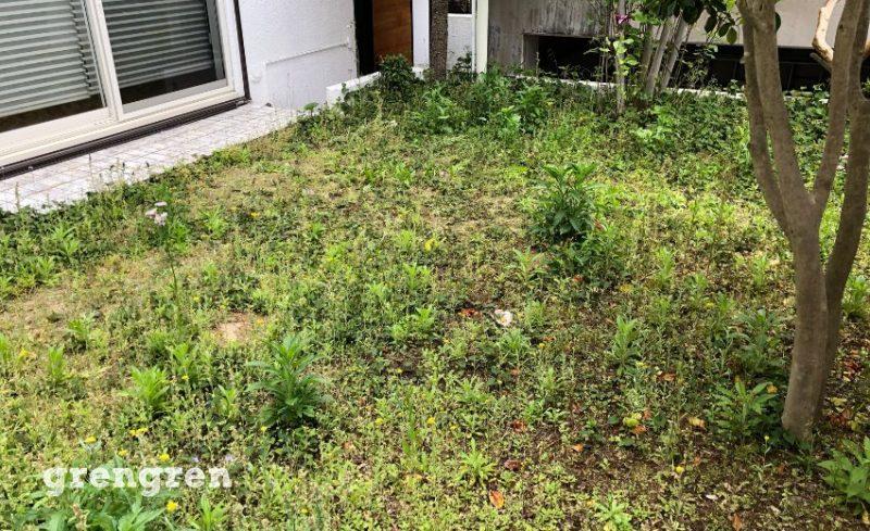 横浜市の荒れたお庭の個人邸
