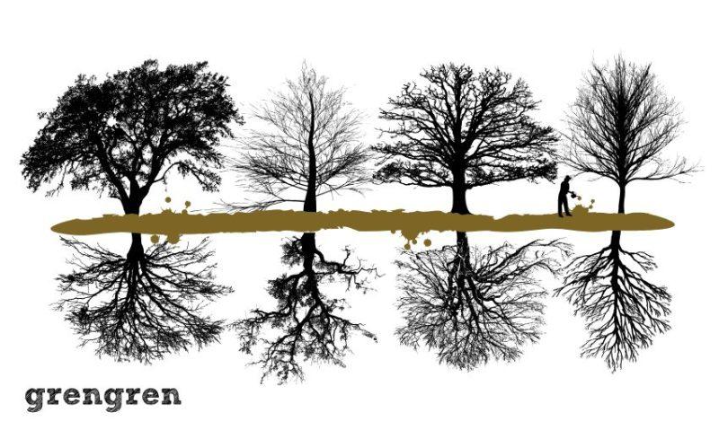 樹木の根っこの大きさを表現したアニメ画像