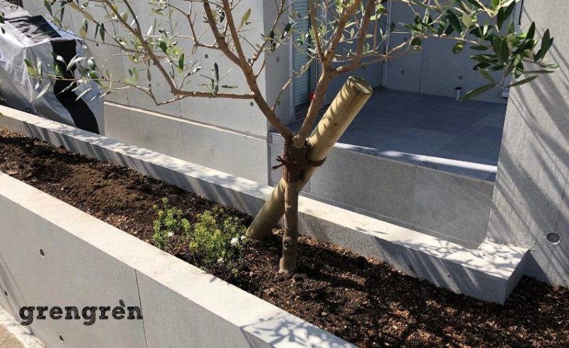 樹木の支柱を丸太で行うセンス