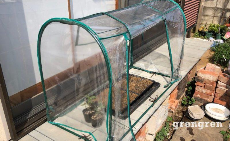 家庭用温室の中で底面給水によって発芽を促す造園会社ぐりんぐりん代表横田の種まき