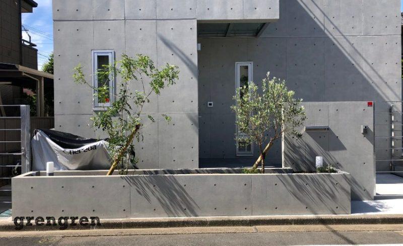 表通りの花壇に移植した樹木