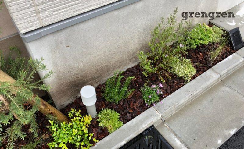 世田谷区の個人邸の西向き花壇の植栽例