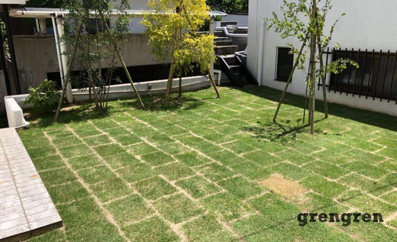 横浜市の個人邸の綺麗な芝生のお庭