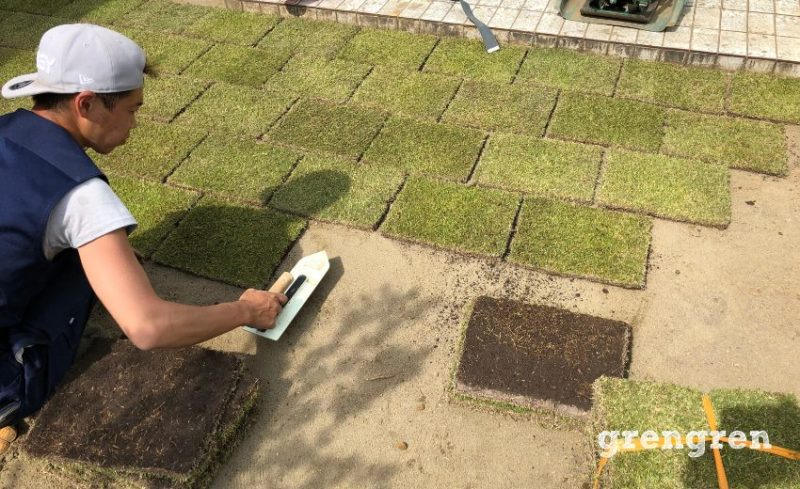 丁寧な仕事を心がける芝生の張り方