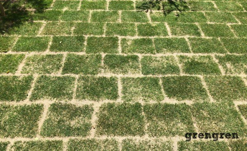 横浜市青葉区の個人邸で芝生TM9への張替え庭づくり