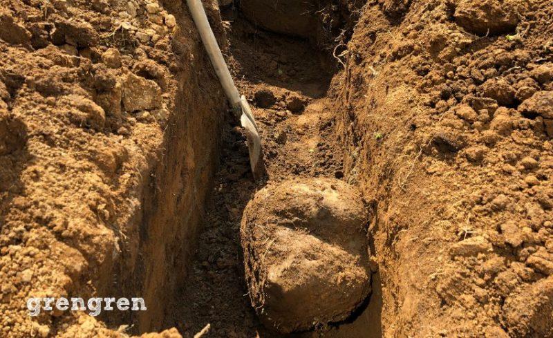 芝生のための透水管を埋める作業
