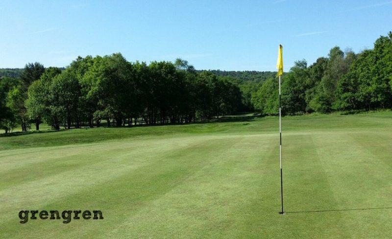 綺麗な管理された芝生のゴルフコースのグリーン