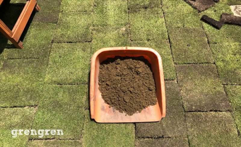 ナチュラルガーデンの庭づくりに欲しい芝生TM9の芝生の目地いれる砂