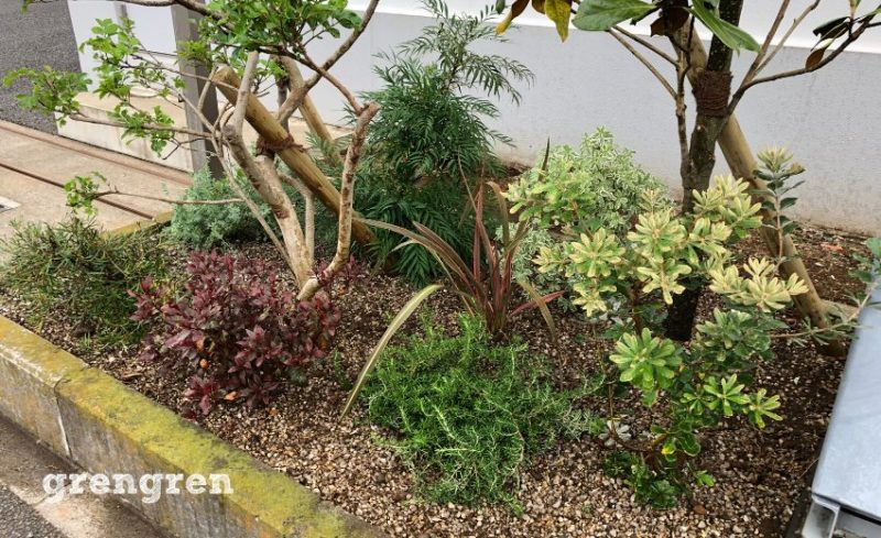 成長を見越して植栽する下草類
