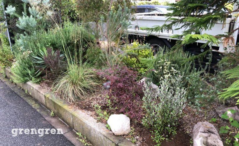 江東区のナチュラルガーデンの庭づくりの南側植栽