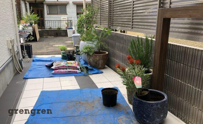 港区の新築個人邸のエントランス植栽工事