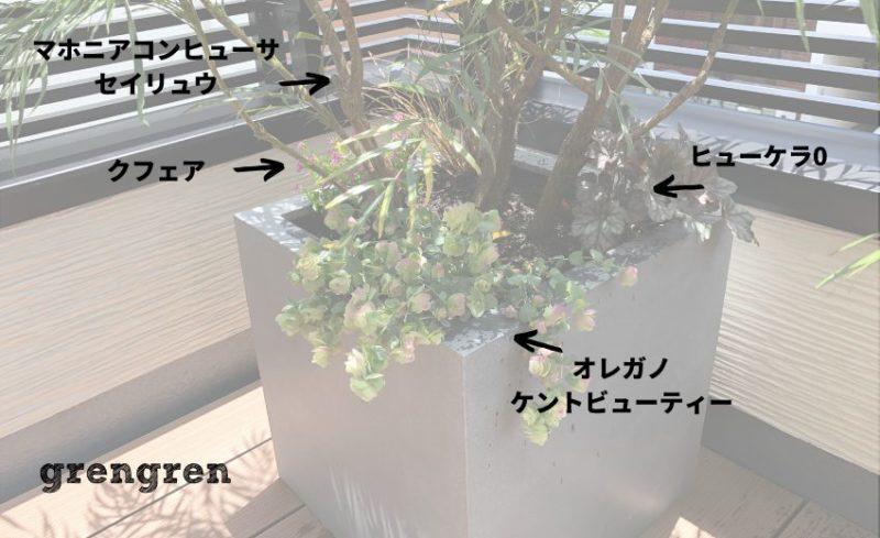 日当たりと日陰具合で植物を選択する
