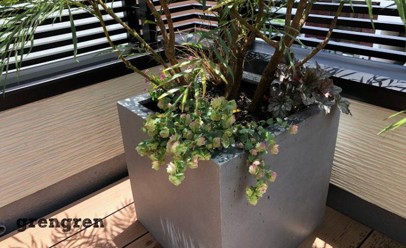 世田谷区の新築住宅のお隣りさんとの目隠し植栽