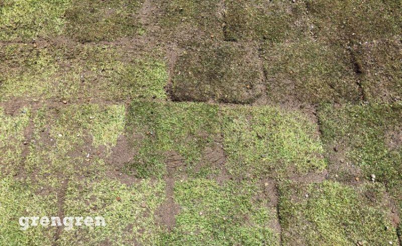 ナチュラルガーデンの芝生に目地に砂をいれる作業の施工後